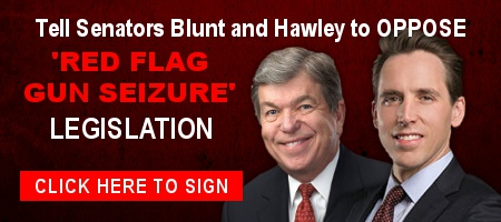 More Republican Senators Backing 'Red Flags' -- Act Now!