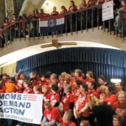 Hundreds of Gun Grabbers Hit the Capitol! Fight Back!